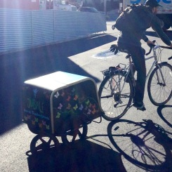 Jubali Bike Trailer